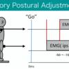 Anticipatory Postural adjustment:なぜフィードフォワード制御なのか?