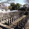 【真田山陸軍墓地】日本近代史 墓碑が整然と並ぶ 心静かにお参りする所