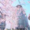 """旬の着物と、""""着物警察"""" のこと。 桜は着物にとっても特別な花"""