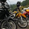 和歌山県紀ノ川河川敷(田井ノ瀬グラウンド界隈)のダートコースをバイクで遊んでみる。