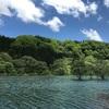 藤原湖です