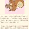 千葉県 (都道府県ライフプラン冊子)
