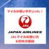 JALマイルの使い方~国際線特典航空券PLUSは陸マイラーにメリットあるのか?!~