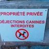 「シニカル」の語源┃道で見かけた犬の看板から考えてみる。