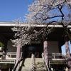 2020/03/21 枝垂桜の旅3 西新宿編 常圓寺/高円寺駅前(番外)