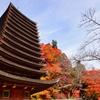 座って拝する神社 奈良・談山神社