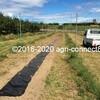 畑の引っ越し&ニンニクの植え付けをしました2020