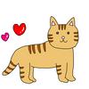 猫の手術費10万円事件