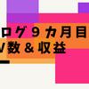【ブログ運営報告9カ月目】PV数と収益