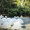 京都ユートピアツアー 2 日本人の始祖