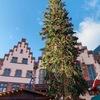 【12月22日まで!】フランクフルトのクリスマスマーケット【急げ!】