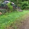 家の周りと、チャレンジ畑の草刈り