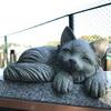 老巡礼と供猫の哀話を伝える 善部の猫塚(横浜市旭区)