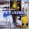 日中文化交流事業