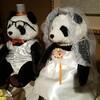 弟の結婚式がありました。