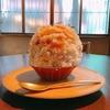殿堂入りのお皿たち その475【こんにゃく寿司とかき氷 KONさん の かき氷】