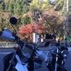 【ツーリング】紅葉見に定光寺近辺に行ってきました