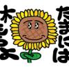 キャラ ひまわりさん その10 紹介