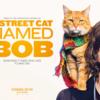 猫とミュージシャンの奇跡の物語に感動!「ボブという名の猫 幸せのハイタッチ」鑑賞レビュー!(A street cat named BOB)