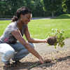 険しい植木職人への道のり