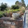 【豊中の子連れオススメスポット】自然豊かな服部緑地公園でお散歩。