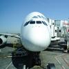 【アメリカ横断】羽田空港JALサクララウンジで最高の時間を満喫