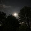 ウエサク満月♏️🌕✨ 瞑想備忘録