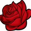 【34点に当確ランプ点灯?】2017宅建試験合格ラインレースの主役は当確のバラを付けることができるのか?