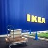 IKEAに行ってきました。