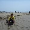 高松干潟へ潮干狩りに・・・