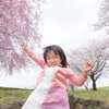 Google AdSense合格体験記【2017年・画像なしのサブブログ・32円・2ヵ月半】