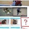 グーグル広告、謎の配信停止!? 1日で復活するも連絡なし!!