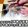 【Amazon】荷物が到着!!アクアリウム用品の曰く付き流木とPHペーハー測定用品!!