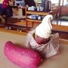 いも好きあつまれ!小千谷市【さつまいも農カフェきらら】さんのさつまいもソフトクリーム。