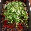 挽肉とサラダ茄子、赤ピーマンの黒ごまピーナッツソテー