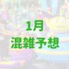 【フロリダディズニーワールド】2019年1月混雑予想