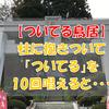 【ついてる鳥居】山形の珍スポット☆鳥居に抱きついて「ついてる」と唱えると・・・