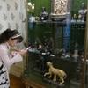 ルーブル美術館♪動物さんモチーフ作品♪ハネムーン旅行記♪