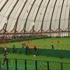 今日も日本女子ソフトボールリーグ1部の試合観戦です⚾