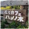 花とカフェ「ハンノ木」