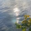 ◆鮮明でリアルな夢〜「土」の時代から「風」の時代への移行の実際④