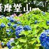 梅雨時季は紫陽花(あじさい)で有名な「護摩堂山」へハイキング