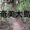 南国の島奄美大島へ避寒に行ってきた