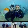 熱帯魚が癒してくれる海