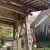 河内渓谷の紅葉と成覚寺〜三重の犬連れ散歩