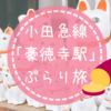 小田急線 豪徳寺、招き猫と焼き芋でほっこりDay