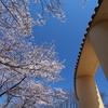 桜ヶ丘公園~聖蹟桜ヶ丘周辺の風景。