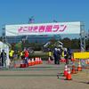 よこはま春風ラン!あるいは、桜と富士とカモメの情景
