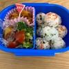 【写真画像つき】実録!年少さんの男の子、1週間のお弁当。