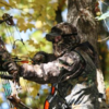 Why Every Hunter Needs To Understand About Deer Hunting Regulations